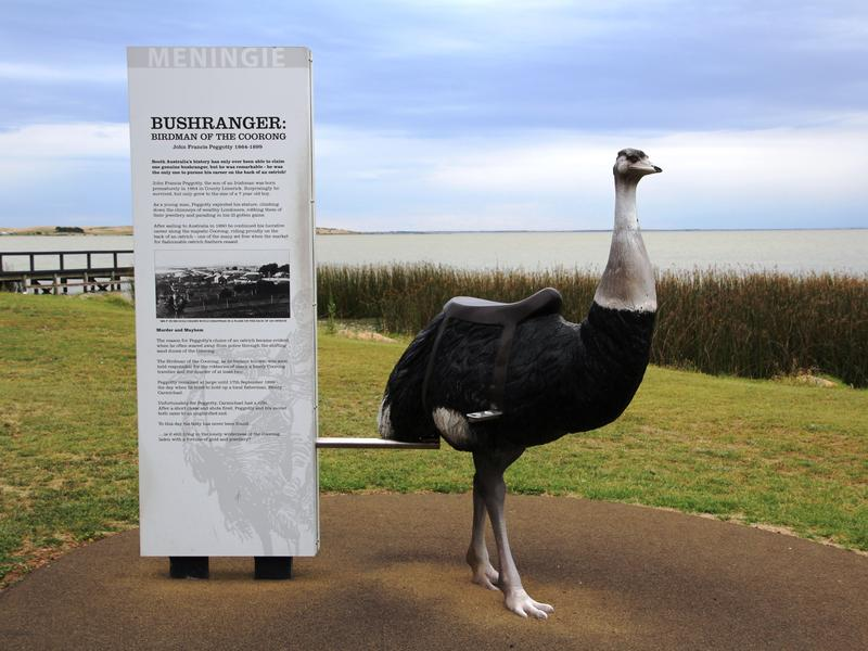 Bushranger Birdman of the Coorong